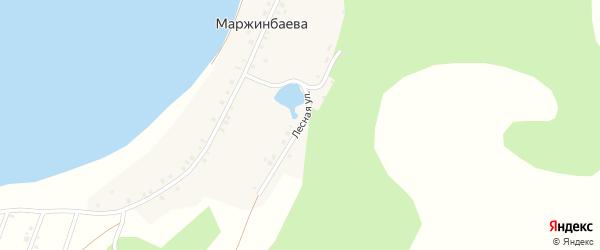 Лесная улица на карте деревни Маржинбаева с номерами домов