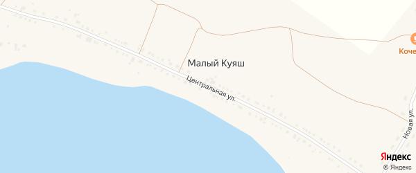 Центральная улица на карте деревни Малого Куяша с номерами домов