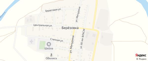 Улица Мичурина на карте поселка Березовки с номерами домов