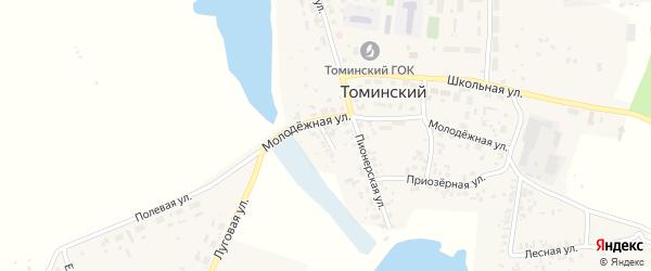 Речная улица на карте Томинского поселка с номерами домов