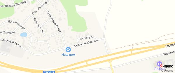Лесная улица на карте поселка Нового Кременкуль с номерами домов