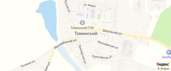 Полевая улица на карте Томинского поселка с номерами домов
