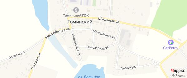 Приозерный переулок на карте Томинского поселка с номерами домов