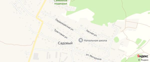 Первомайская улица на карте Садового поселка с номерами домов