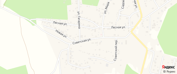 Переулок Звездный ( жз Полёт ) на карте деревни Малиновки с номерами домов