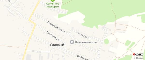 Лесная улица на карте Садового поселка с номерами домов