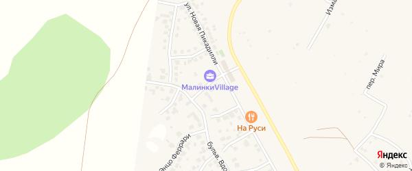 Улица Любови Орловой (мкр N4) на карте деревни Малиновки с номерами домов