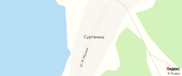 Улица Ж.Мусина на карте деревни Суртаныша с номерами домов