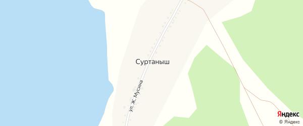 Лесная улица на карте деревни Суртаныша с номерами домов
