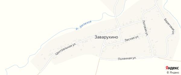 Центральная улица на карте деревни Заварухино с номерами домов