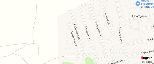 Рябиновая улица на карте Прудного поселка с номерами домов