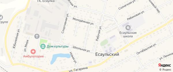 Пионерская улица на карте Есаульского поселка с номерами домов