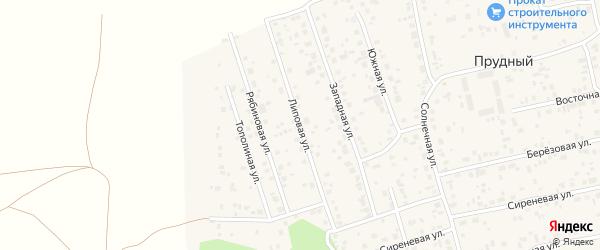 Липовая улица на карте Прудного поселка с номерами домов