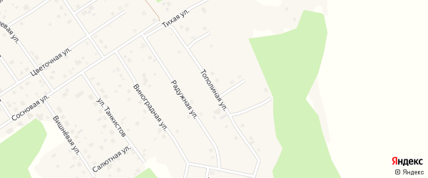 Улица Тополиная ( жз Мясокомбинат ) на карте деревни Малиновки с номерами домов