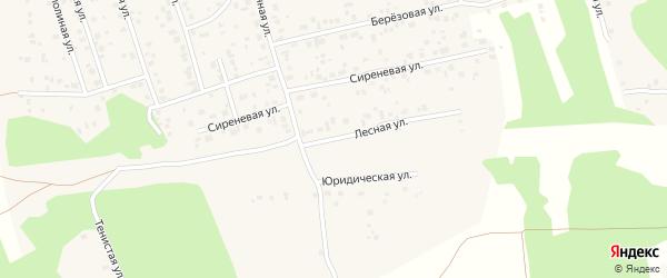 Лесная улица на карте Прудного поселка с номерами домов