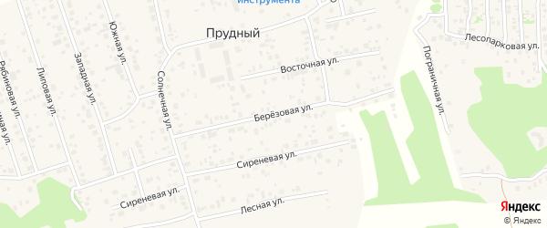 Березовая улица на карте Прудного поселка с номерами домов