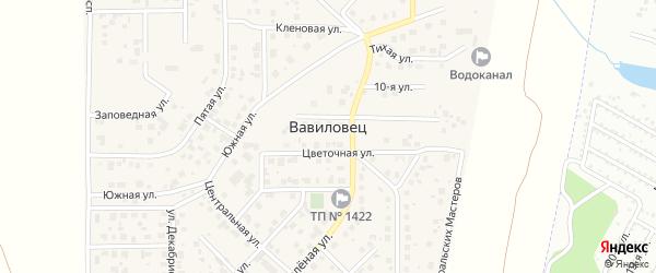 Солнечная улица на карте поселка Вавиловца с номерами домов