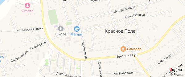 Зеркальный переулок на карте поселка Красного Поля с номерами домов