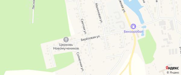 Березовая улица на карте поселка Саргазы с номерами домов