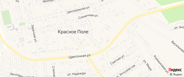 Отрадная улица на карте поселка Красного Поля с номерами домов