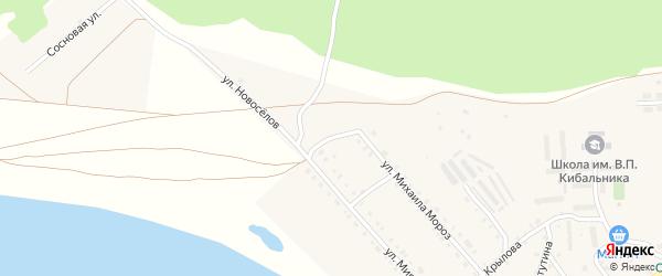 Тополиный переулок на карте села Кичигино с номерами домов
