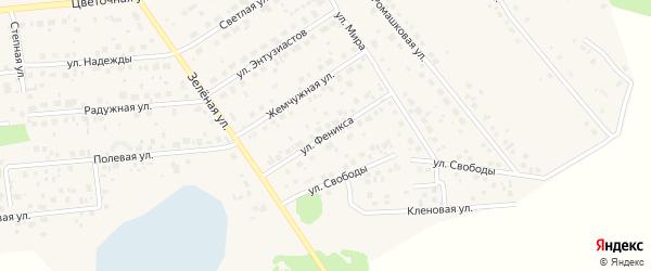 Улица Феникса на карте поселка Красного Поля с номерами домов