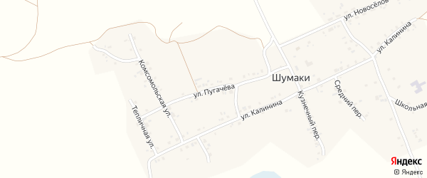 Улица Пугачева на карте деревни Шумаки с номерами домов