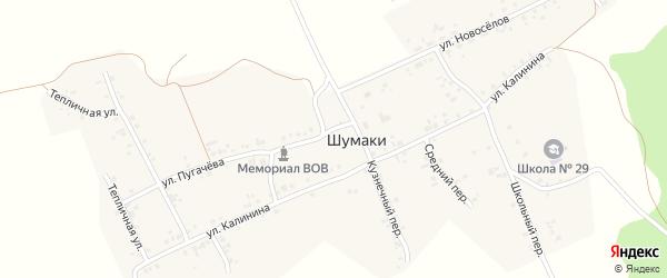 Средний переулок на карте деревни Шумаки с номерами домов