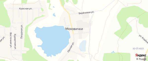 Карта деревни Моховички в Челябинской области с улицами и номерами домов