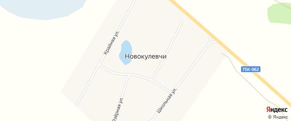 Школьная улица на карте поселка Новокулевчи с номерами домов