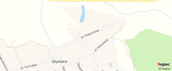 Улица Новоселов на карте деревни Шумаки с номерами домов