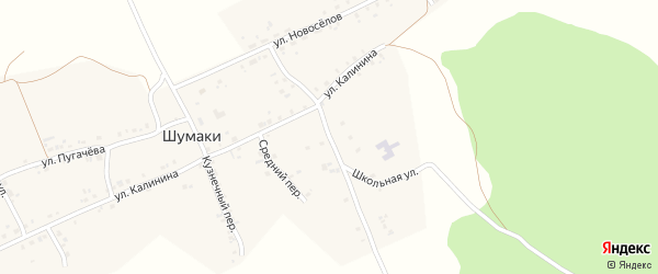 Школьный переулок на карте деревни Шумаки с номерами домов
