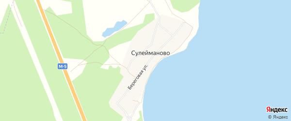 Карта деревни Сулейманово в Челябинской области с улицами и номерами домов