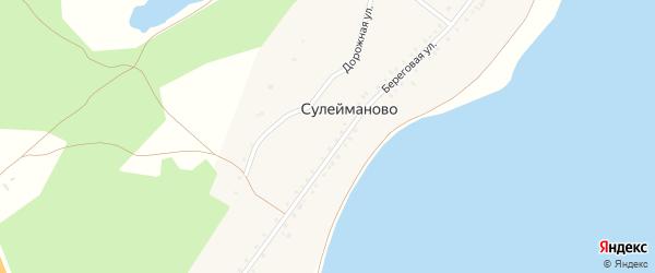 Дорожная улица на карте деревни Сулейманово с номерами домов