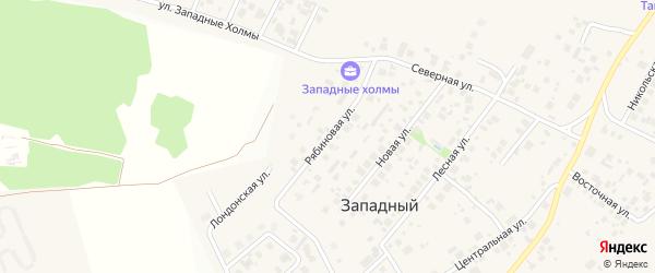 Рябиновая улица на карте Западного поселка с номерами домов