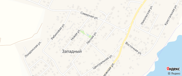 Лесная улица на карте Западного поселка с номерами домов