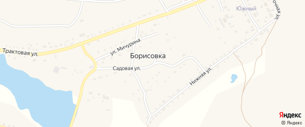 Заречная улица на карте поселка Борисовки с номерами домов