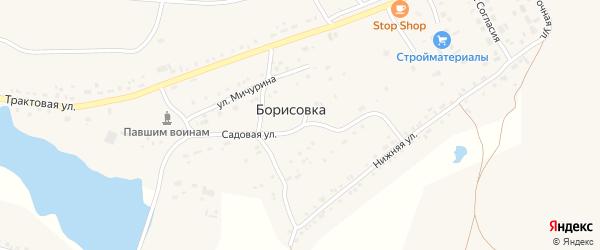 Садовый переулок на карте поселка Борисовки с номерами домов