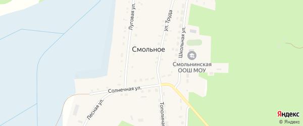 Солнечная улица на карте деревни Смольного с номерами домов