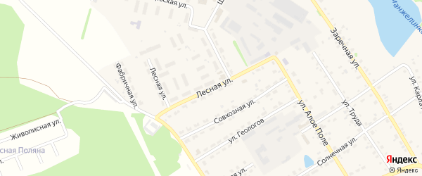 Лесная улица на карте села Еманжелинки с номерами домов