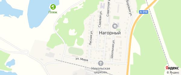 Лесная улица на карте Нагорного поселка с номерами домов