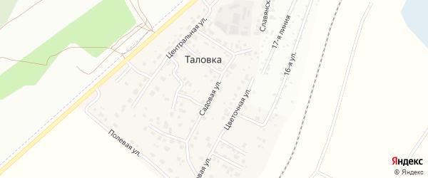 Садовая улица на карте деревни Таловки с номерами домов