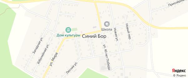 Дорожная улица на карте поселка Синего Бора с номерами домов