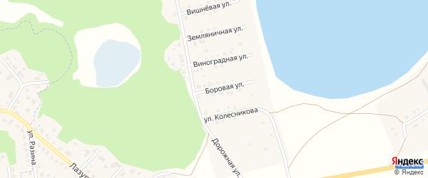 Боровая улица на карте Увельского поселка с номерами домов