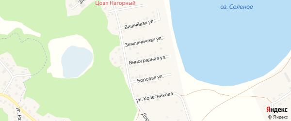 Виноградная улица на карте Увельского поселка с номерами домов