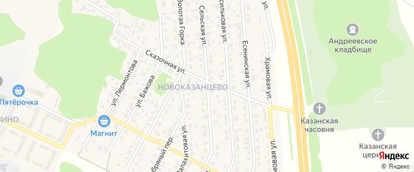 Сельская улица на карте деревни Казанцево с номерами домов