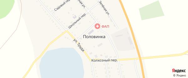 Советский переулок на карте села Половинки с номерами домов