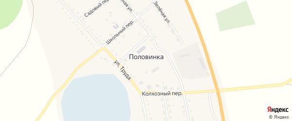 Зеленая улица на карте села Половинки с номерами домов