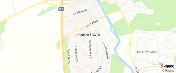 Карта деревни Нового Поля в Челябинской области с улицами и номерами домов