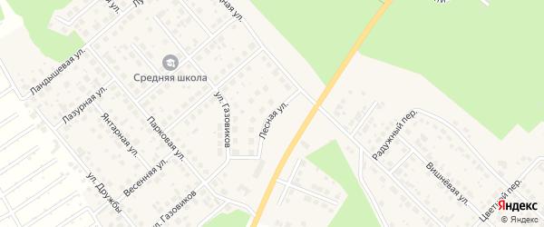 Лесная улица на карте Долгодеревенского села с номерами домов